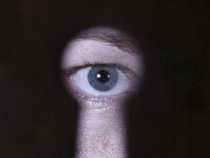 PeepingTomResize_fct523x392x261.0x10.0_ct300x225
